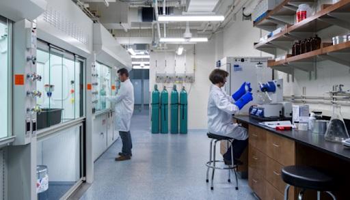 Sem matar animais: carne de laboratório promete revolução na pecuária