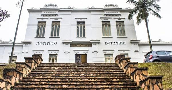Instituto Butantan planeja exportar 27 milhões de doses da CoronaVac